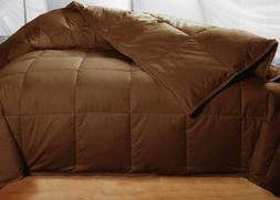 Chocolate  Queen Colored White Down Blanket Comforter